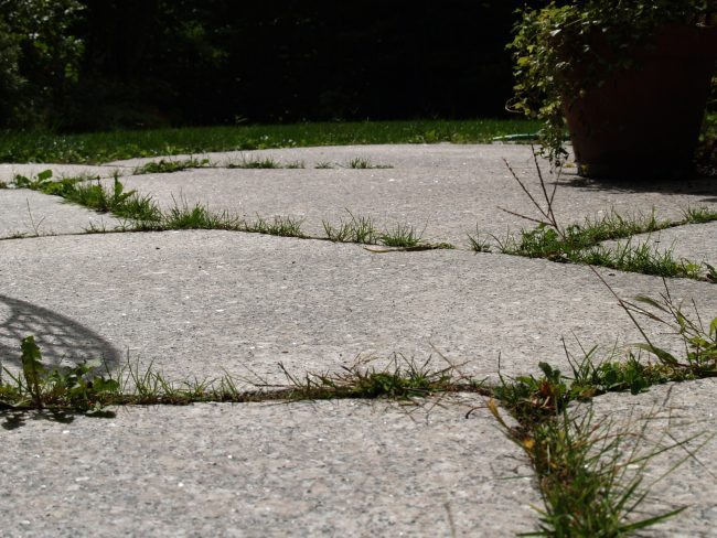 Irregular Deer Isle granite pavers