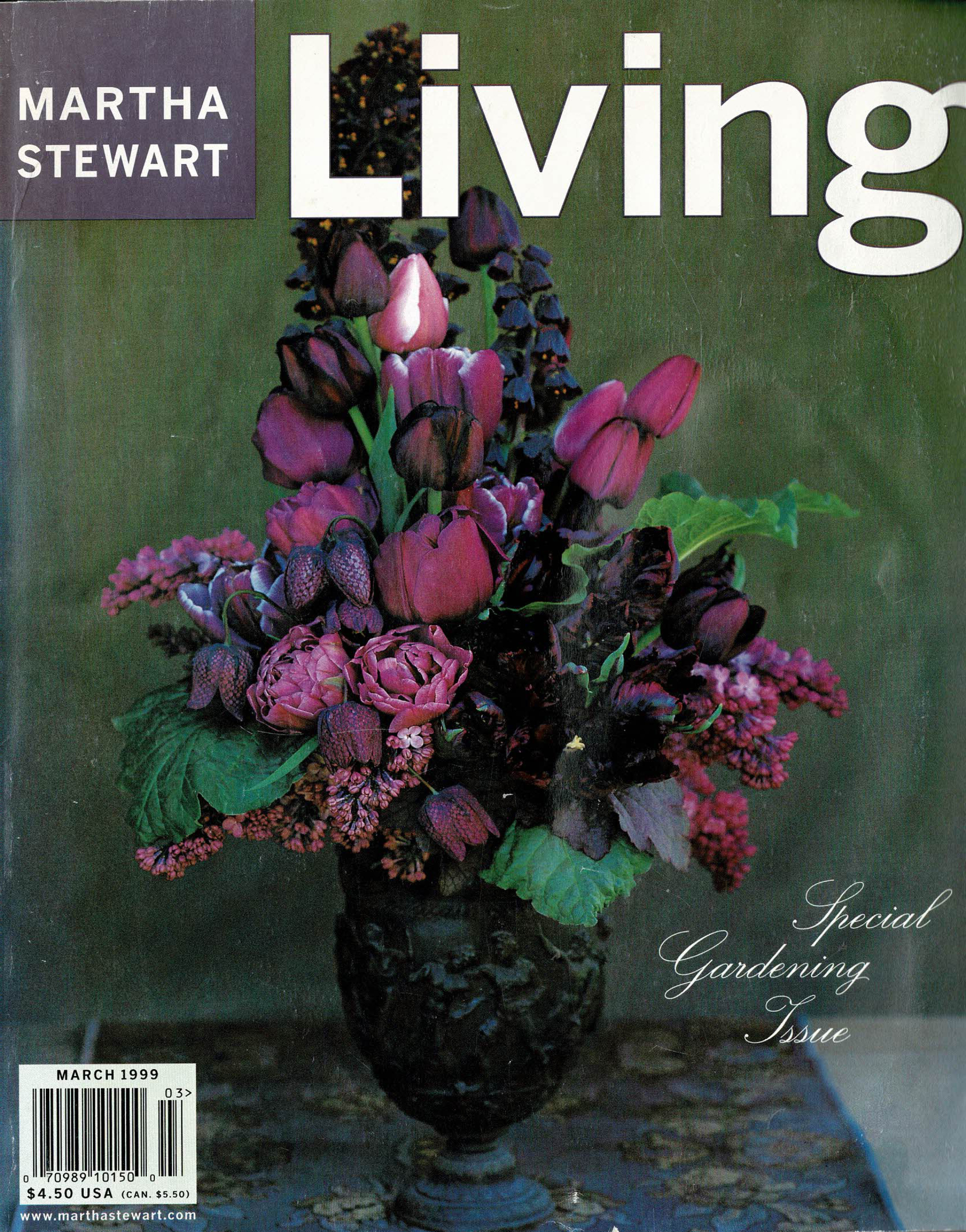 Martha Stewart Living, March 1999